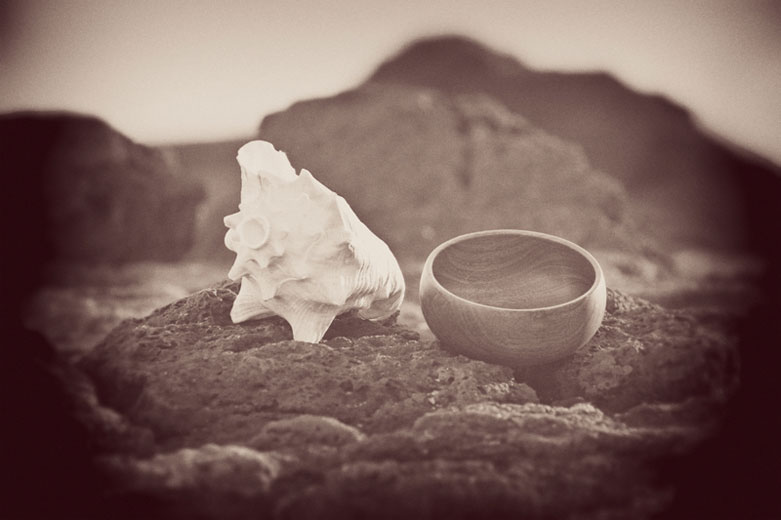 Conch Shell and Hawaiian Water Bowl